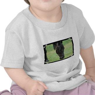 Caballo negro dulce camisetas