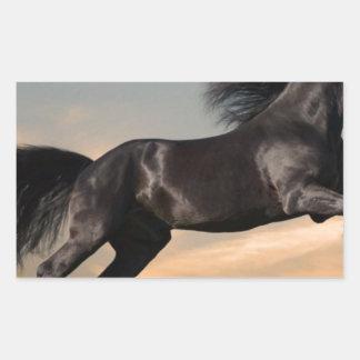 caballo negro en desierto etiquetas