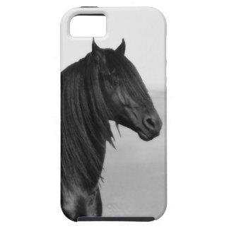 Caballo negro frisio orgulloso del semental iPhone 5 carcasa
