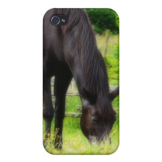 Caballo negro hermoso iPhone 4 funda