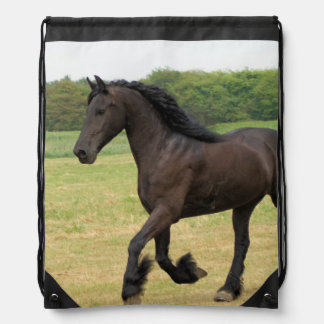 Caballo negro mochila