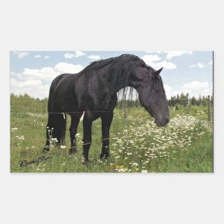 Caballo negro pegatina rectangular