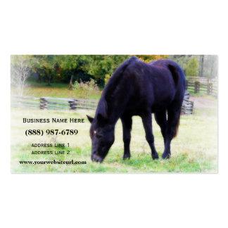 Caballo negro que pasta tarjeta de visita