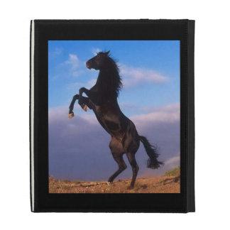 Caballo negro que se alza hermoso con la foto del