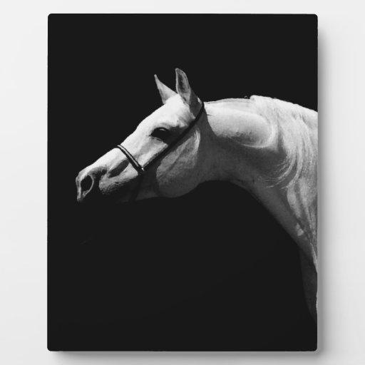 Caballo negro y blanco placa de plastico