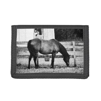 caballo por bosquejo blanco y negro de la cerca