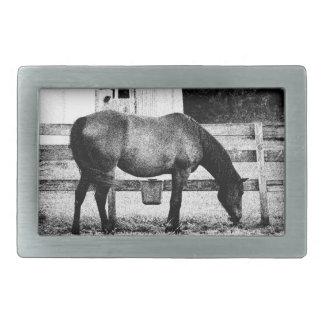 caballo por bosquejo blanco y negro de la cerca hebillas cinturón rectangulares