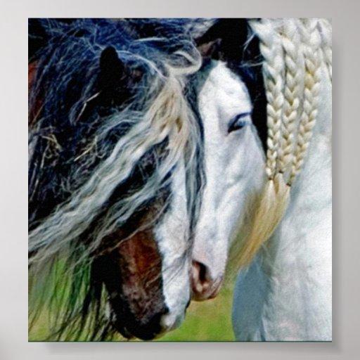 caballo poster