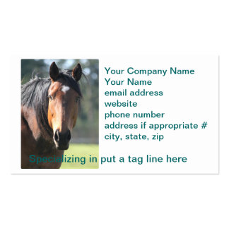 Caballo: Primer grande del caballo de Brown de la  Tarjetas Personales