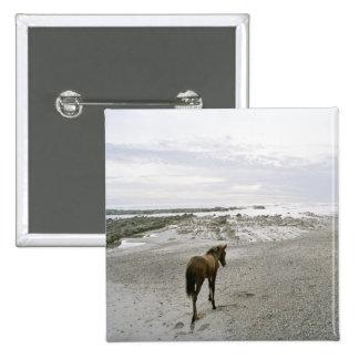 Caballo que camina en la playa pin cuadrado
