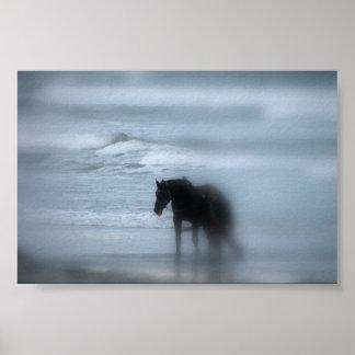 Caballo que camina la playa Newport RI Impresiones