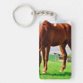 caballo que come la hierba llavero rectangular acrílico a una cara