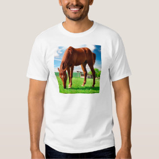 caballo que come la hierba playera