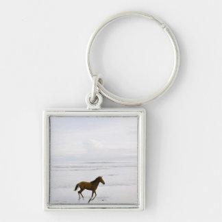 Caballo que corre en la playa llavero cuadrado plateado