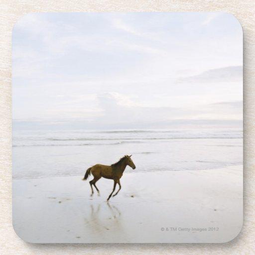 Caballo que corre en la playa posavasos