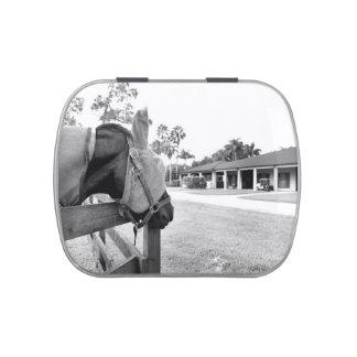 caballo que mira fijamente bw c.jpg del granero latas de caramelos