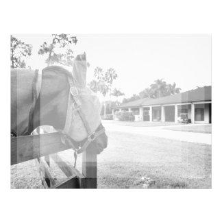caballo que mira fijamente bw c.jpg del granero membretes personalizados
