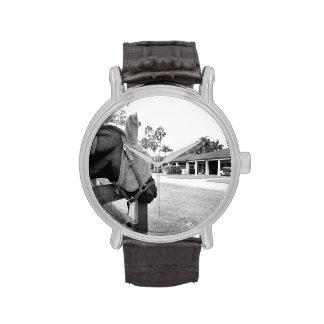 caballo que mira fijamente bw c.jpg del granero reloj de mano