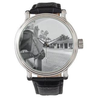 caballo que mira fijamente el bw del granero relojes