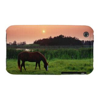 Caballo que pasta en campo en la puesta del sol ce Case-Mate iPhone 3 carcasa