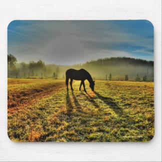 Caballo que pasta en la salida del sol en foto mouse pad