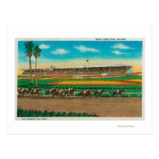Caballo RacesArcadia, CA del parque de Santa Anita Tarjetas Postales