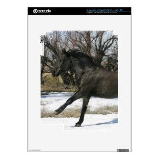 Caballo salvaje del mustango en la nieve 2 iPad 3 skins