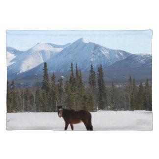 Caballo salvaje en la carretera de Alaska Manteles