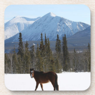 Caballo salvaje en la carretera de Alaska Posavasos