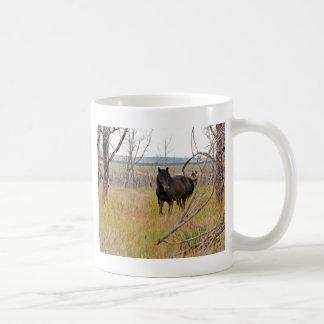 caballo salvaje en Mesa Verde Tazas De Café