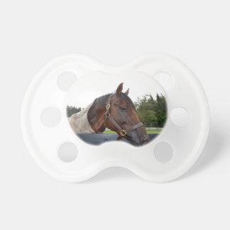 caballo sobre cambio del cielo de la vista lateral chupetes