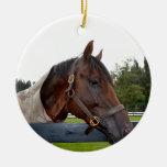 caballo sobre cambio del cielo de la vista lateral ornato