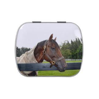 caballo sobre cambio del cielo de la vista lateral frascos de caramelos