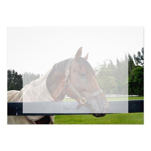 caballo sobre cambio del cielo de la vista lateral comunicados personales