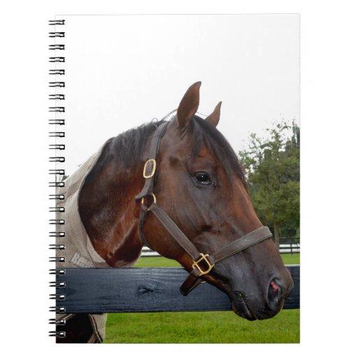 caballo sobre cambio del cielo de la vista lateral libros de apuntes con espiral