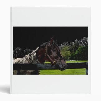 caballo sobre colores oscuros de la vista lateral