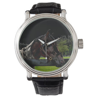 caballo sobre colores oscuros de la vista lateral relojes