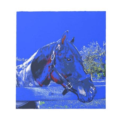 caballo sobre dibujo animado del azul de la vista  blocs de notas