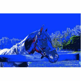 caballo sobre dibujo animado del azul de la vista  escultura fotográfica