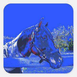 caballo sobre dibujo animado del azul de la vista calcomanías cuadradass personalizadas
