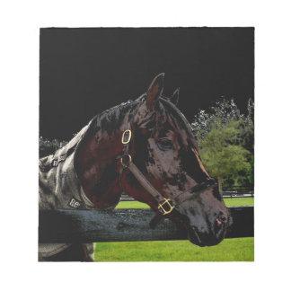 caballo sobre oscuridad de la vista lateral de la libreta para notas
