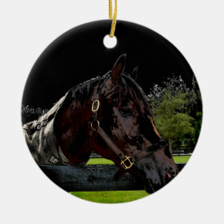 caballo sobre oscuridad de la vista lateral de la ornamento para arbol de navidad