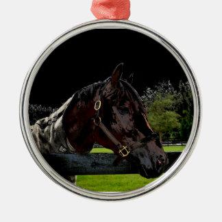 caballo sobre oscuridad de la vista lateral de la adorno de navidad