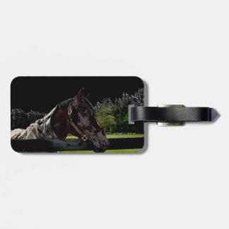 caballo sobre oscuridad de la vista lateral de la etiquetas para maletas
