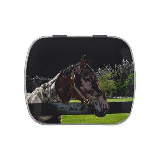 caballo sobre oscuridad de la vista lateral de la  latas de caramelos