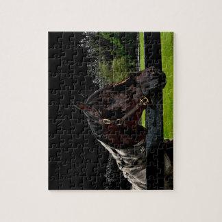 caballo sobre oscuridad de la vista lateral de la puzzle con fotos