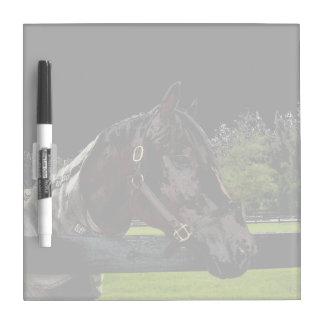 caballo sobre oscuridad de la vista lateral de la tableros blancos