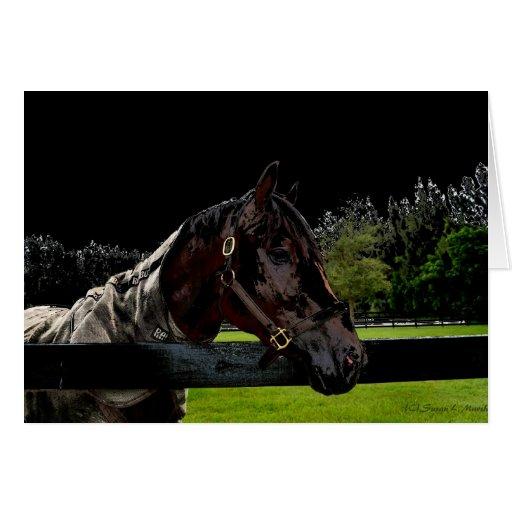 caballo sobre oscuridad de la vista lateral de la tarjeta pequeña