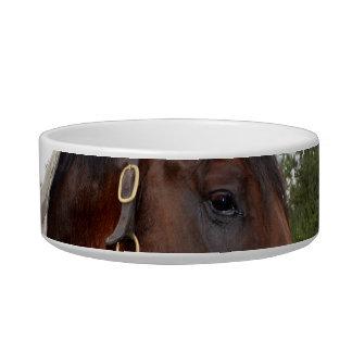 caballo sobre vista lateral de la cerca tazón para gato