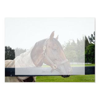 """caballo sobre vista lateral de la cerca invitación 5"""" x 7"""""""